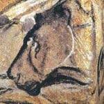 Chauvet Cave - Famous lion Cave painting